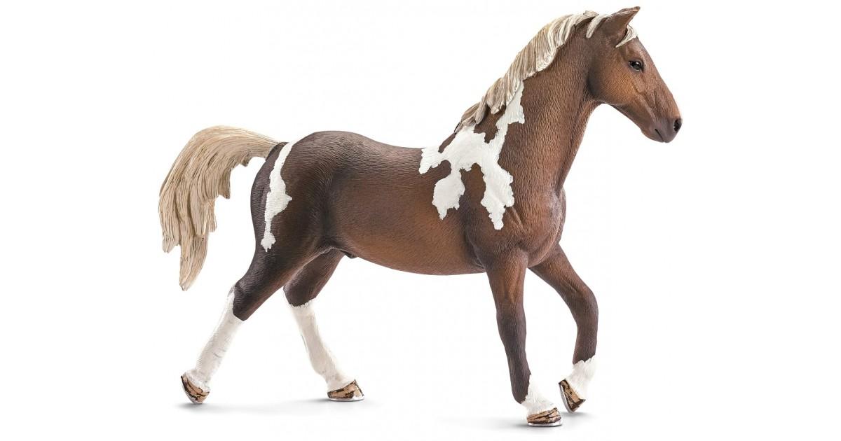 картинки раскраски лошади шляйх молодости, обладая привлекательными