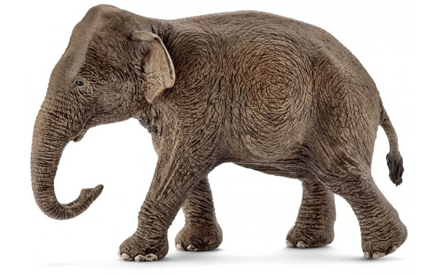 Фигурка Schleich Самка азиатского слона (Шляйх)